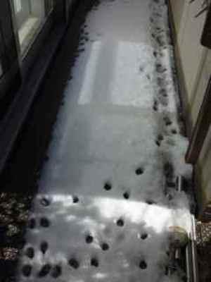 Snow02_3